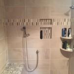 Shower Door before (2)